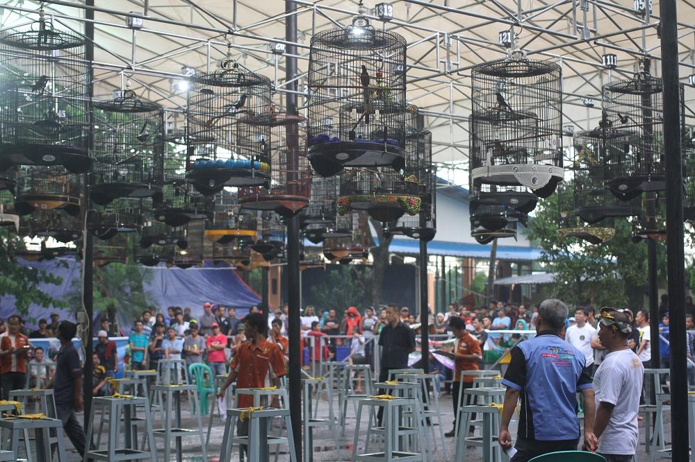 2.000 Peserta Ramaikan Festival Burung 'CitraRaya Kota Berkicau'